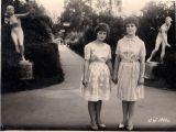 Так виглядала головна алейка санаторію у 1964 р. (початок алейки, вид від вхідних воріт)